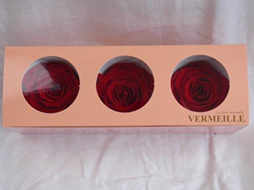 Rosen gefriergetrocknet Red