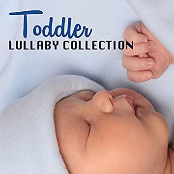 Toddler Lullaby Collection - Sounds of Nature