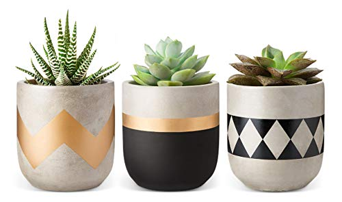 Mkono 4 Cement Succulent Planter with Drainage Hole, Set of 3 Small Concrete Herb Plant Pots Modern Flower Pots Indoor for Cactus Faux Plant Home Office Decor (Plants NOT Included)
