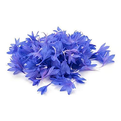 Aerlan Wildblumenwiese,Cornflower Seeds Hochwertiger Blauer Balkon im Topf Four Seasons Flower Seeds-500g,Blumensamen winterhart mehrjährig