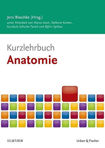 Kurzlehrbuch Anatomie (Kurzlehrbücher)