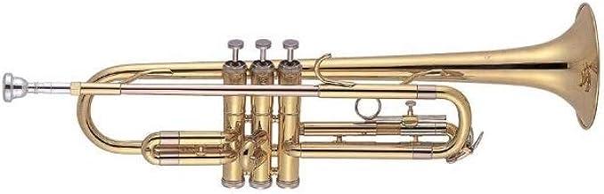 10 Mejor Trompeta J Michael de 2020 – Mejor valorados y revisados