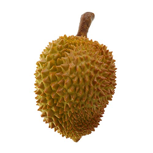 Amuzocity Durian de Frutas Y Verduras de Comida Falsa Realista Artificial para Exhibición en El Hogar - tal como se describe, do