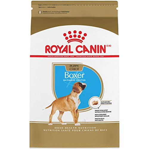 Royal Canin Breed Health Nutrition Boxer Puppy dog food