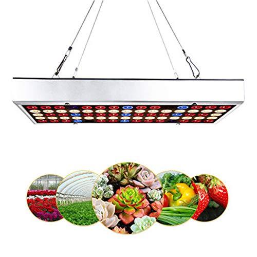 Meilleures ventes usine de meubles de maison élèvent la lumière 300W a mené la lampe croissante avec le bleu rouge élèvent des lumières pour les plantes d'intérieur légumes lampes de croissance de