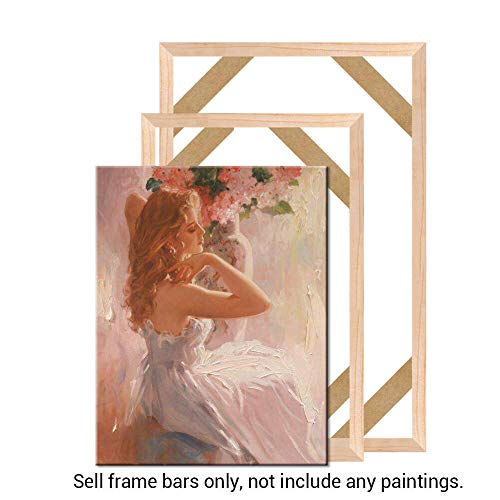 Geeduo DIY Solid Wood Canvas Frame Kit 16x24 Inch for Oil Painting /& Wall Art Easy to Build Canvas Stretching System Include Framed Picture Accessories Frame, 16x24