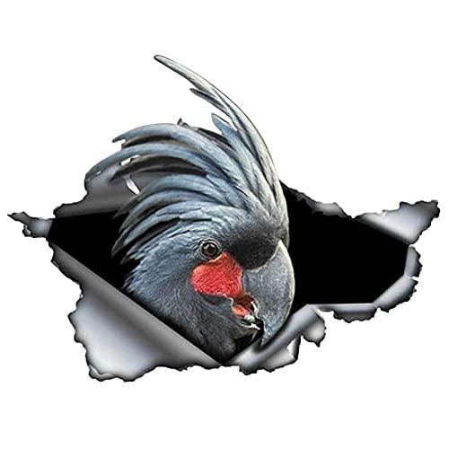 ZQZL Calcomanía Negro Cockatoo Etiqueta engomada de Coche Pegatinas Reflectantes Pegatinas Coche Parrot Parrot Etiqueta, 13cm * 10cm