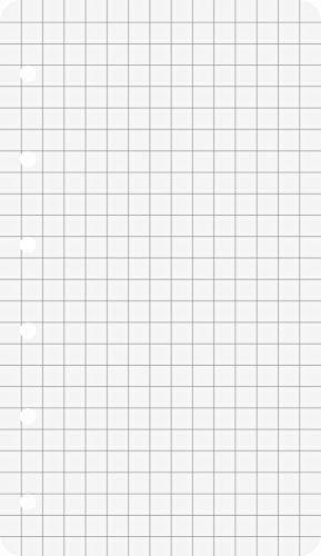 """Ringbuch - Einlagen / Papier \""""BRUNNEN\"""" 50 Blatt - kariert (7,4 x 12,8 cm)"""