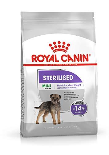 sterilised Royal Canin Mini 1 kg crocchette per Cani sterilizzati e in sovrappeso