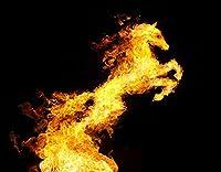 KAPANOU DIY5dダイヤモンドペインティングキット、黒の背景に馬への焚き火の変換、フレームダイヤモンドナンバーラインストーンペインティングキット、大人の子供向け手作りダイヤモンドアートクラフト 40x50cm