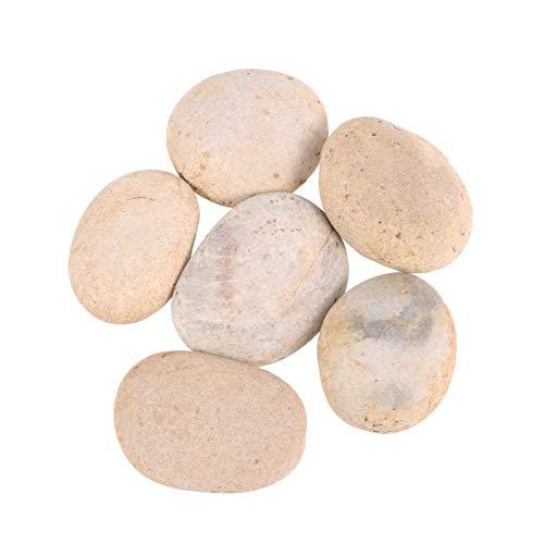 Healifty 6pcs pequeñas Rocas Pintura Manualidades Bricolaje Pintura Lisa bondad de guijarros Piedras Rocas Playa para Pintar 5cm-9 cm (Color Mezclado)