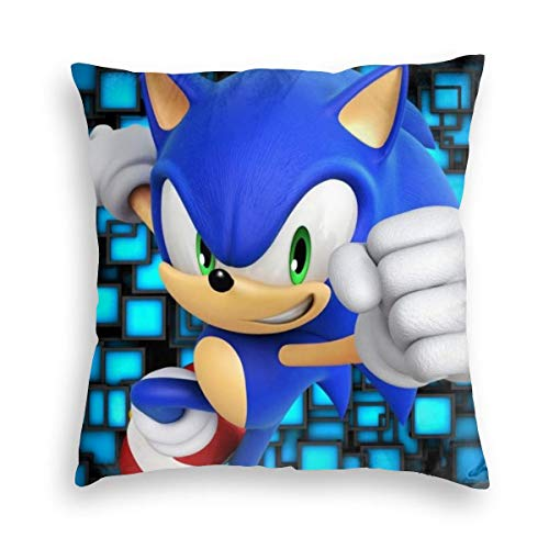 Super Comfort Velvet Square Pillow Case Fade Resistant, Sonic The Hedgehog Secrets of The Medal Game Poster, Unique Zippered Cushion Covers for Winter 18x18 Inch