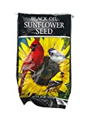 Black Oil Sunflower Seeds (40 Lb Bag)