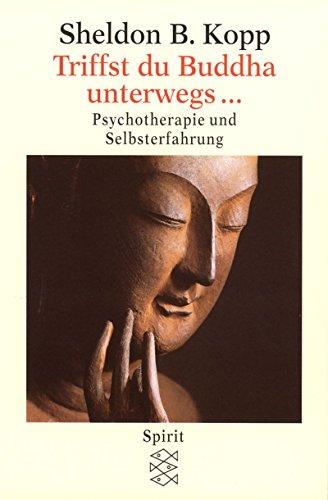 Triffst du Buddha unterwegs...: Psychotherapie und Selbsterfahrung