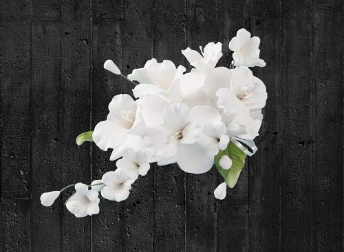 Zuckerblumenbouqet Dendrobie weiß