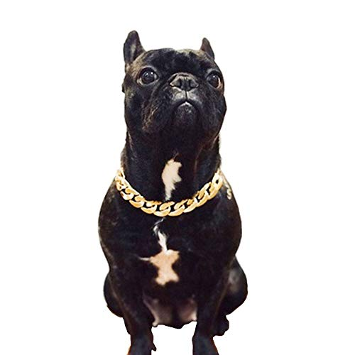 AIOO Mode Französisch Bulldogge Hund Katze Hals Bully Kunststoff Synthetische Goldkette Drehmoment Kleine Und Mittlere Hundehalsband Haustier Halskette Zubehör (2 Paket) (Color : Gold)