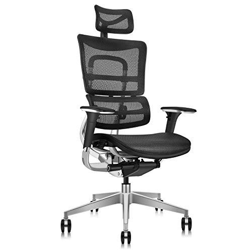 MOOJIRS Ergonomischer Bürostuhl mit Stuhllehnenhebefunktion - Vollmaschiges Netzdesign-Vollaluminiumrahmen-Dynamisches Lendenkissen-Einstellbare Kissentiefe-Einstellbarer Neigungswinkel der Stuhllehne