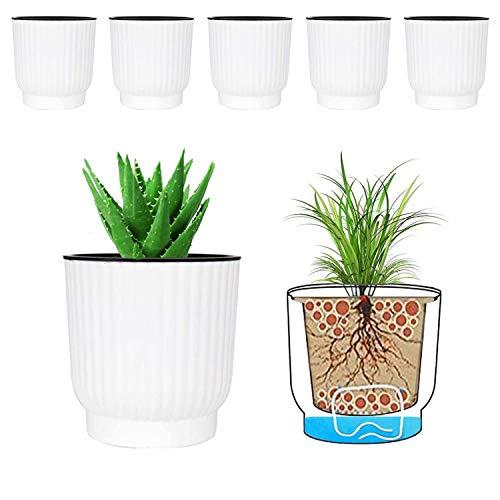 MOHENA 12CM Vasi autoirriganti con corda Contton per piante da interno, vasi da fiori in plastica per tutte le piante da appartamento, fiori, violette africane - Bianco confezione da 6