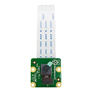 Raspberry Pi Camera Module V2-8 Megapixel,1080p (RPI-CAM-V2)