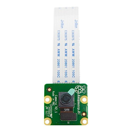 Amazon.com - Raspberry Pi Camera Module V2 - 8 Megapixel,1080p