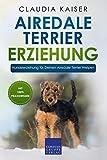Airedale Terrier Erziehung: Hundeerziehung für Deinen Airedale Terrier Welpen