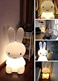 LED Night Light Bedside Sleeping Baby Cartoon Table lamp Rabbit Miffy for Girl's Gift Cute Decoration S