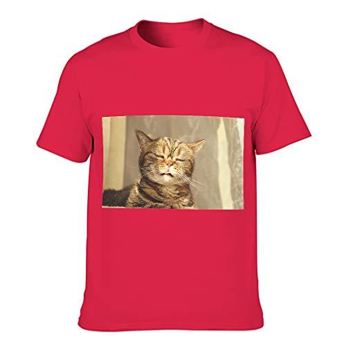 Camiseta de algodón para hombre con diseño de gato perezoso, cuello redondo, camiseta interior para correr Red1 L