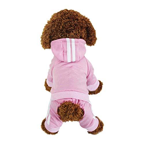 LifeWheel - Felpa con cappuccio per cani, per l'esterno