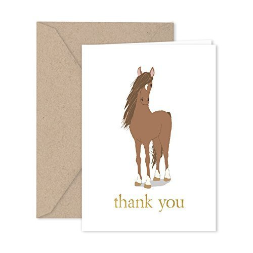 Paper Frenzy Horse Thank You Note Cards 25 pack with Kraft Envelopes