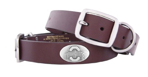 ZEP-PRO Ohio State Buckeyes Brown Leather Concho Dog Collar, Medium