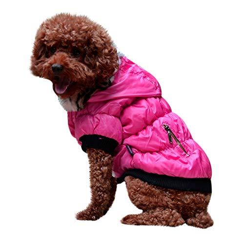 Amphia - Haustier Hund Pelzkragen Mantel Baumwolle Jacke Kleidung,Haustier Hund Katze HündchenWinter Warm Kleidung Kostüm Jacke Mantel Bekleidung(Hot Pink,M)