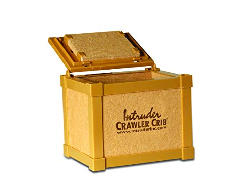 INTRUDER Nightcrawler Worm Bait Box, Keeps Bait Fresh, Packed with Good N' Lively Worm Bedding, 8-inch x 6-inch x 7-inch