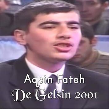 De Gelsin 2001