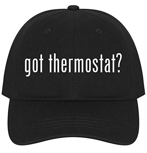 got Thermostat? - Ultra Soft Dad Hat Baseball Cap,...