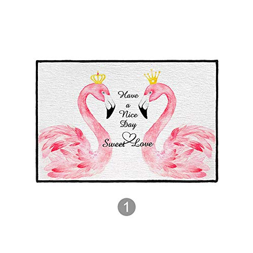 SKTYEE Flamingo Rosa Alfombrillas Puerta del Dormitorio Alfombrilla de la Puerta Alfombra Inodoro Baño Puerta Puerta Absorbente de Agua Alfombrilla de la puerta-50x80 cm_1# Meet