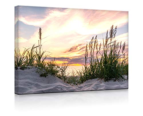 Lightbox-Multicolor | Leuchtbild | Gras am Strand bei Sonnenuntergang | 100x70 cm | Fully Lighted