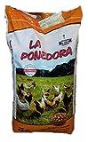 Pienso para gallinas ponedoras en Saco de 25 Kilos