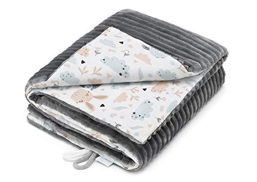 EliMeli Babydecke Kuscheldecke Junge Krabbeldecke 75x100 | Ultraweicher Gestreifter Microfaser-Plüsch Stoff aus Baumwolle | Füllung | hoch Qualität | ideal als Kinderwagendecke ((Grau - Eule))