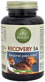 Biomedia Labs Recovery SA Powder (150g)