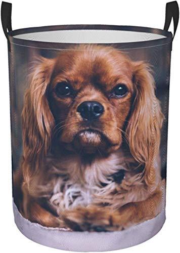 Cesta redonda del organizador del compartimiento de almacenamiento portátil circular lindo del perrito para el cesto de la ropa