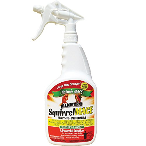 Nature's Mace Squirrel Repellent 40oz Spray/Covers 1,400 Sq Ft/Keep Squirrels & Chipmunks from...