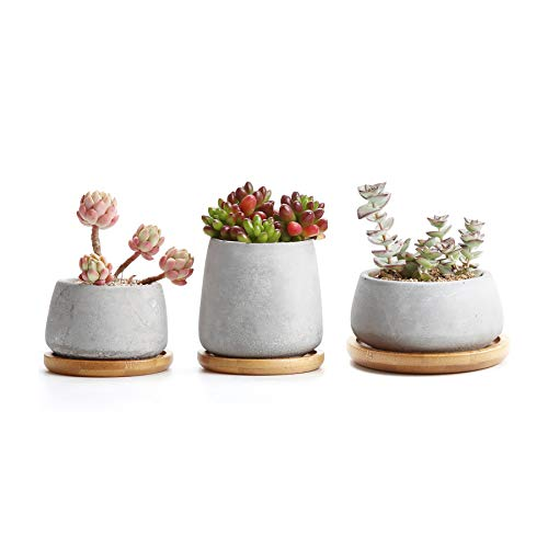 T4U 3 Inch - 4.25 Inch Cement Succulent Cactus Pot, Concrete Planter Pot Container Window Box, Small Clay Pot for Plants Flowers with Drainage Bamboo Tray for Home Decor, Set of 3(Grey)