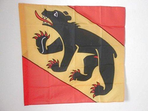 AZ FLAG Flagge KANTON Bern 90x90cm - KANTON BE Fahne 90 x 90 cm Scheide für Mast - flaggen Top Qualität