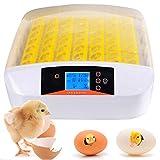 Incubadoras 56 Huevos Completamente Automáticos Incubadora Inteligente Incubadora Criadora de Motores Pollos con Pantalla LED de Temperatura y Control de Humedad (56 Huevos)
