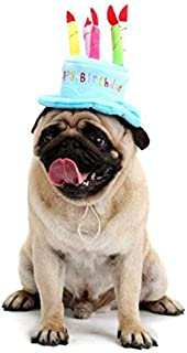 Beauenty Adorable Cat Dog Pet Happy Birthday Party Hat with Cake and 5 Colorful Candles Design Cosplay Costume Accessory H...