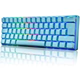 60% Mechanical Gaming Keyboard Mini Portable with Rainbow RGB Backlit Full Anti-Ghosting 61 Key Ergonomic Metal Plate Wired Type-C USB Waterproof for Typist Laptop PC Mac Gamer (Blue/Blue Switch)
