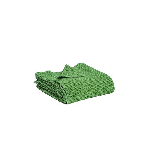 Vivaraise - Couverture canapé - Plaid canapé - Plaid - Couverture Polaire - Couvre lit - Couverture Plaid – Couverture Chaude – Plaid Extra-Doux - Multifonctions - 140 x 200 - Vert - Maia