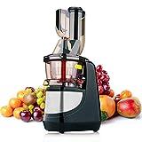 TILUXURY Entsafter Slow Juicer BPA Frei Saftpresse für Gemuese und Obst mit tragbar Griff/Rücklauffunktion/geräuschlosem Motor und Reinigungsbürste für einen nährstoffreichen Saft