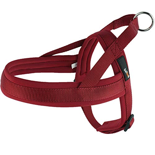 balbali Dog Harness Easy On and Off with 1 Clip for Walk with Small Dogs,Vest Harness with Padded Adjustable Neoprene for Pug Life(XS,Red)