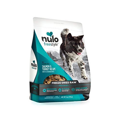 Nulo Freeze Dried Raw Salmon